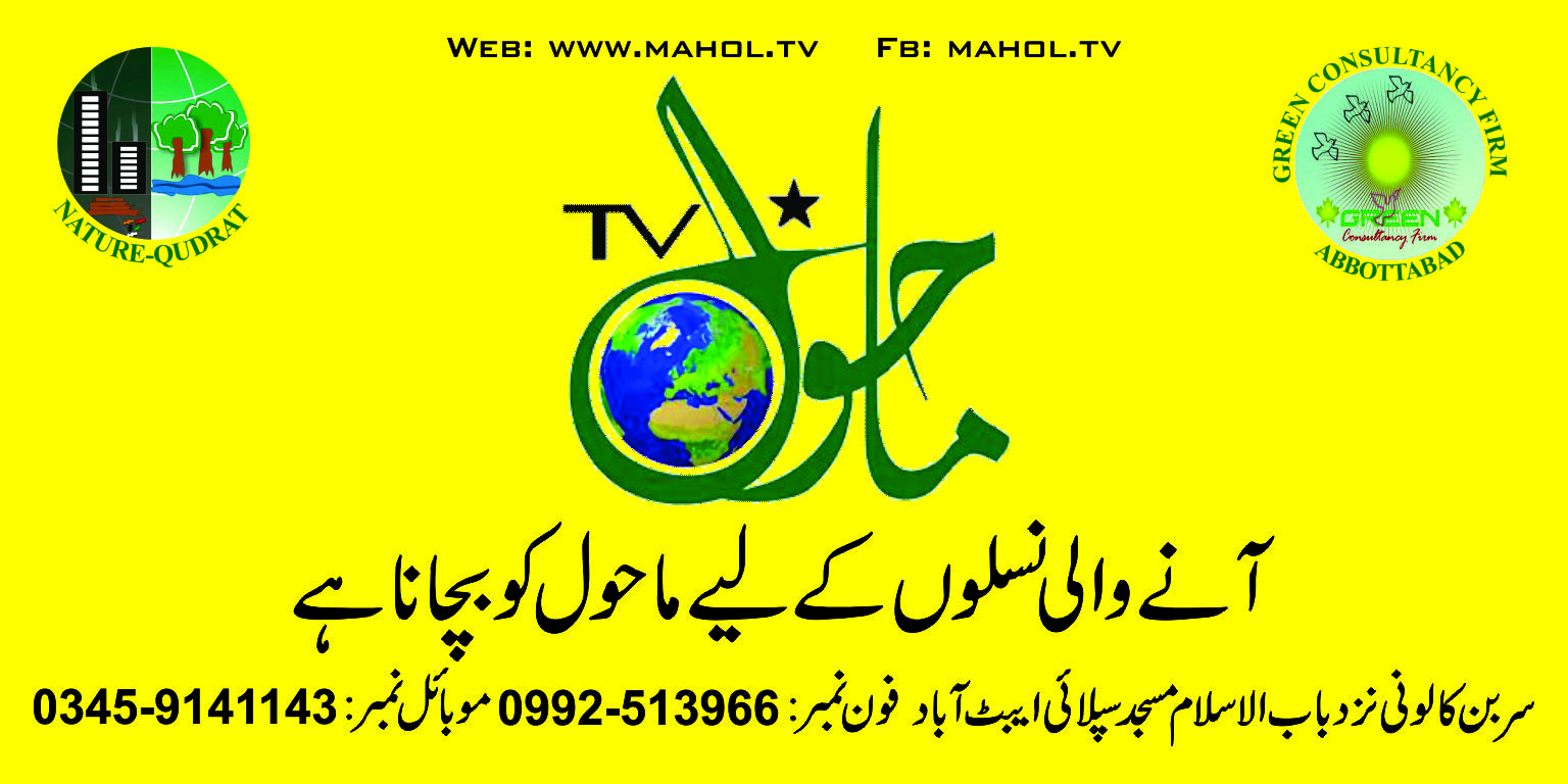 mahol.tv office
